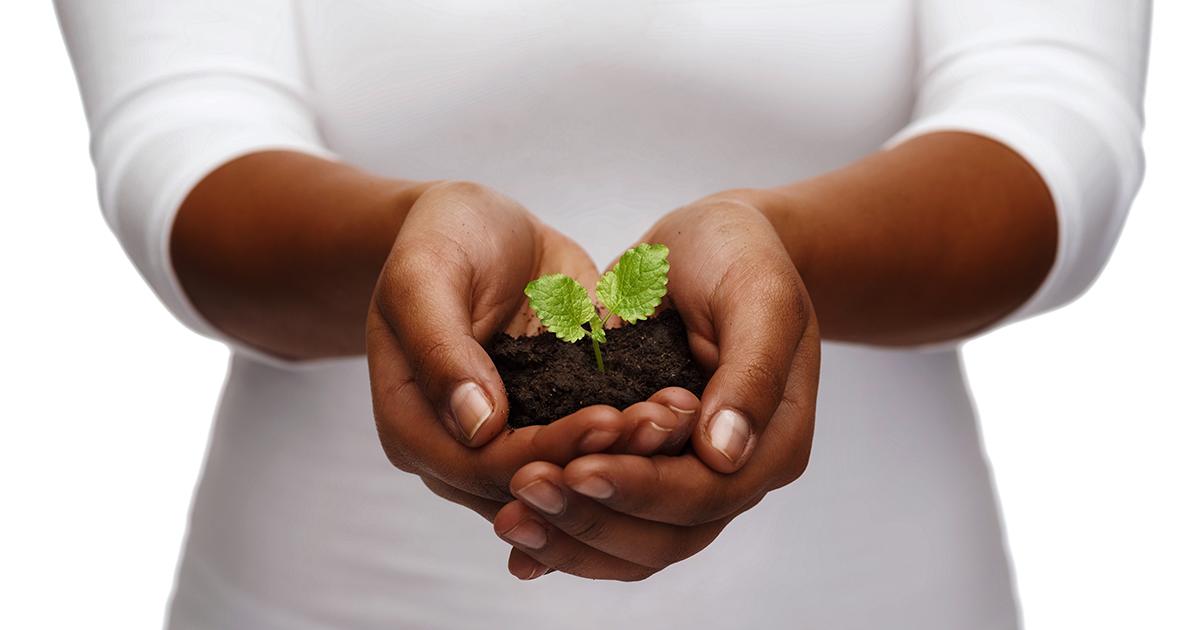 Black & African American-Focused Charities Header Image