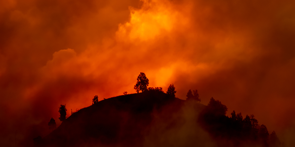 California and Pacific Northwest Wildfires Header Image