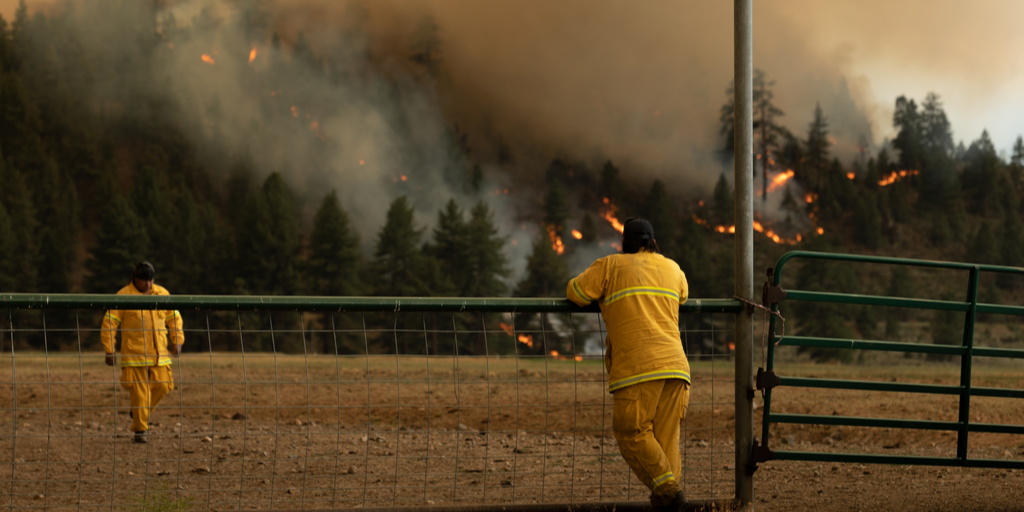 Wildfires in Western States