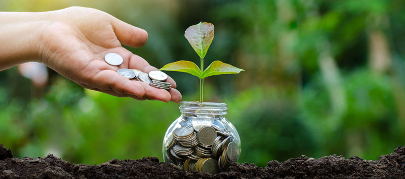 Charity Navigator financials